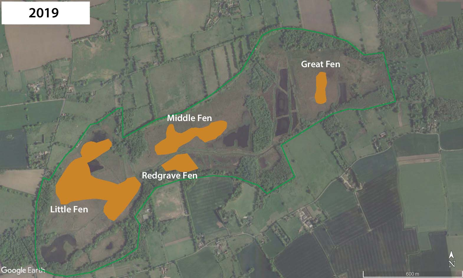 Distribution of D. plantarius at Redgrave and Lopham Fen by 2019